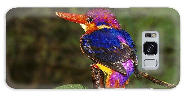 India Three Toed Kingfisher Galaxy Case
