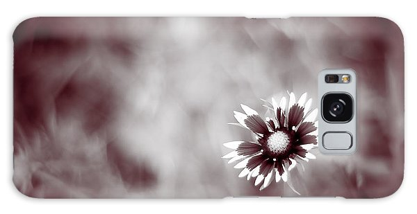Indian Blanket Flower Galaxy Case by Darryl Dalton