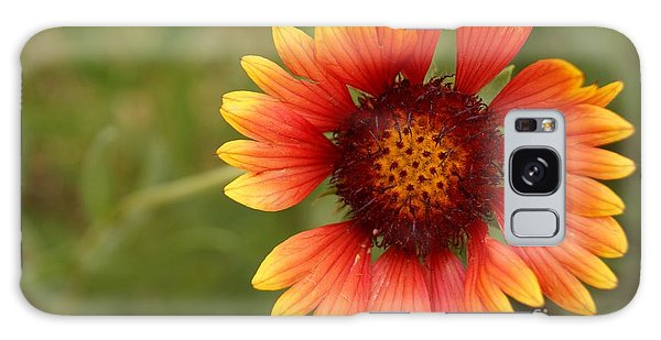 Indian Blanket Flower Galaxy Case