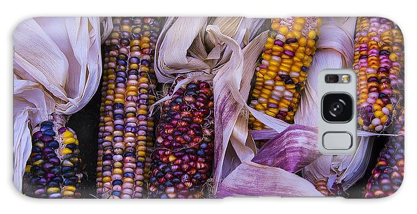 Indian Corn Galaxy Case - Indian Corn Harvest by Garry Gay