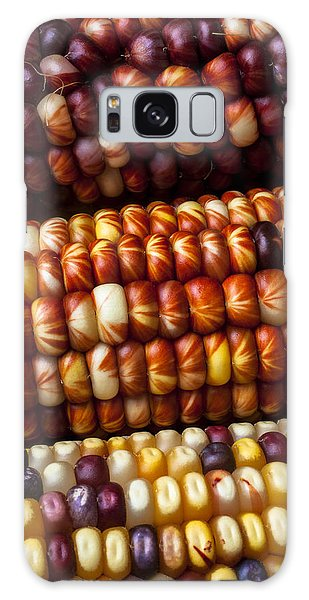 Indian Corn Galaxy Case - Indian Corn Harvest Time by Garry Gay