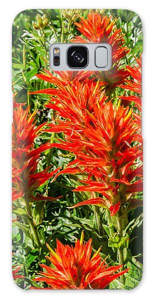 Indian Paintbrush Galaxy Case by Sue Smith
