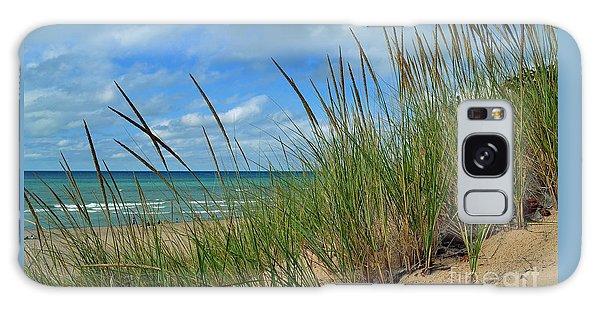 Indiana Dunes Sea Oats Galaxy Case