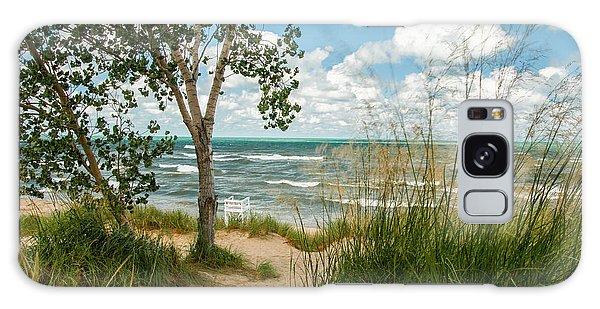 Indiana Sand Dunes State Park Galaxy Case