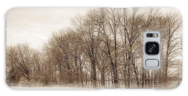 Indiana Winter At Freedom Park - Horizontal Galaxy Case