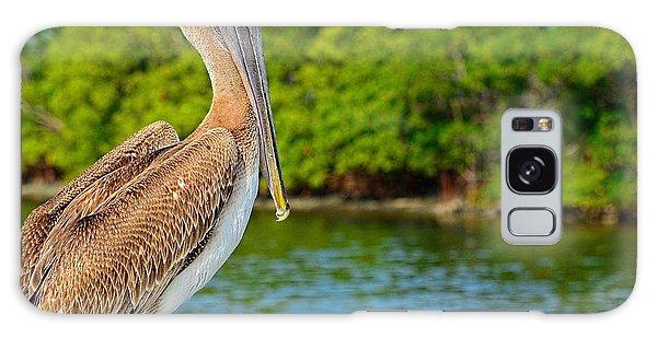 Injured Pelican Galaxy Case by Pamela Blizzard