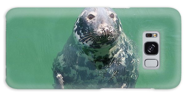 Inquisitive Seal Galaxy Case
