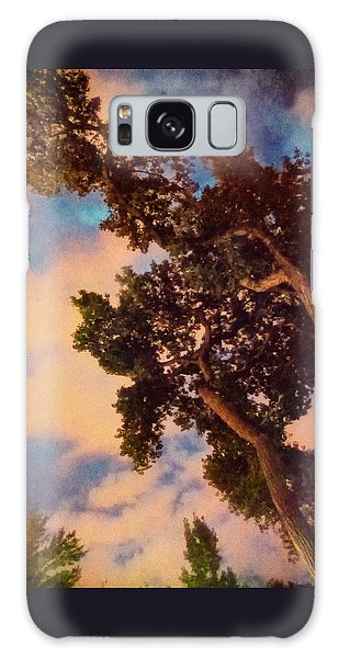 Inspired By Maxfield Parrish Galaxy Case by Mary Lee Dereske