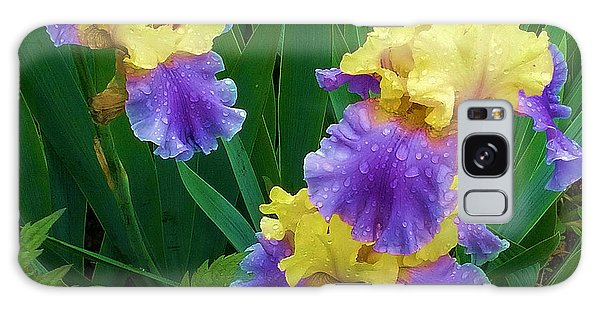 Iris After The Rain Galaxy Case