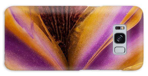 Iris And Gold Dust Galaxy Case