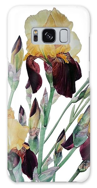 Watercolor Of Tall Bearded Iris In Yellow And Maroon I Call Iris Beethoven Galaxy Case