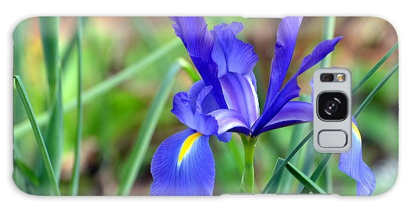 Iris Galaxy Case by Jodi Terracina