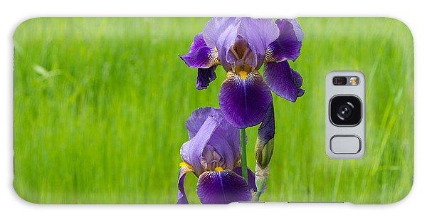 Iris Galaxy Case by Michele Wright