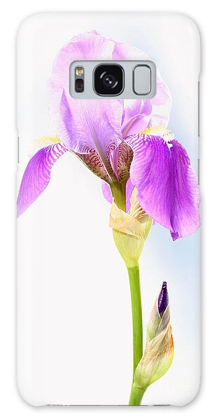 Iris On A Sunny Day Galaxy Case by Steve Augustin