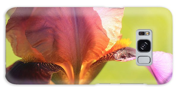 Iris Study 6 Galaxy Case by Jeanette French