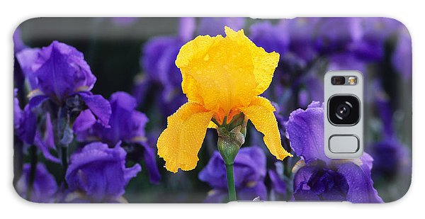Iris Xxiii Galaxy Case by Bijan Pirnia