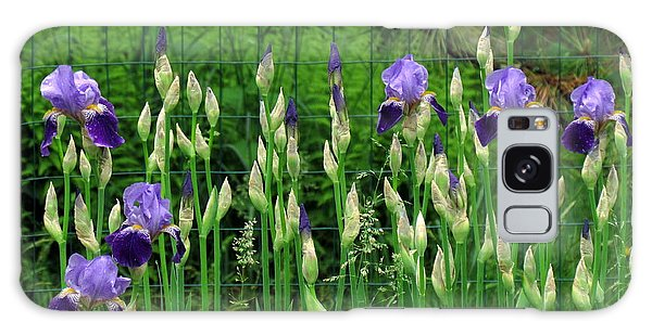 Irises Along The Fence Galaxy Case