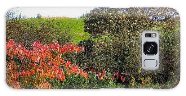 Irish Autumn Countryside Galaxy Case