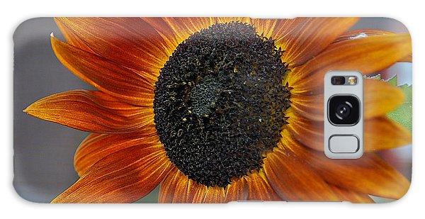 Isabella Sun Galaxy Case
