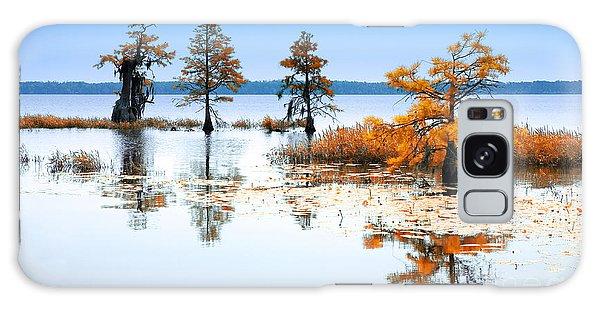 Isle Of Peace - North Carolina Galaxy Case by Dan Carmichael