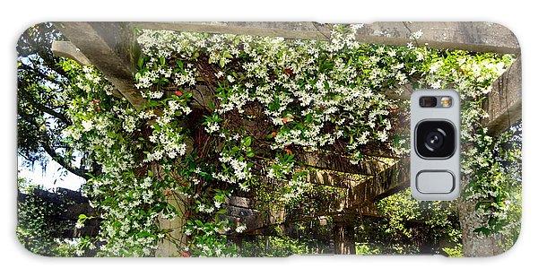 Italian Pergola Flowers  Galaxy Case