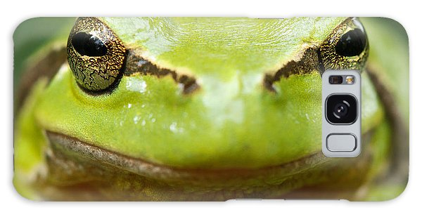 It's Not Easy Being Green _ Tree Frog Portrait Galaxy Case