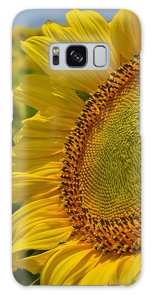 Galaxy Case featuring the photograph Itsy Bitsy by Skip Hunt