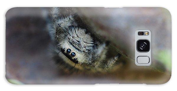 Itsy Bitsy Spider Galaxy Case