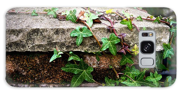 Ivy On Stone Galaxy Case by Crystal Hoeveler