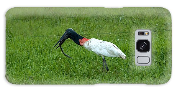 Jabiru Stork Swallowing An Eel Galaxy S8 Case