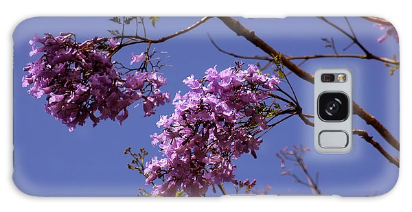 Jacaranda Blooms Galaxy Case