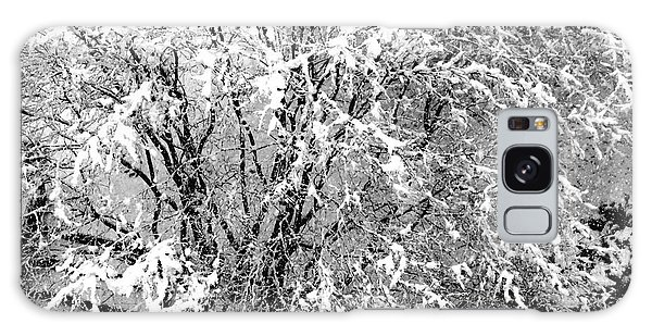 Jackson Pollock's Blizzard Galaxy Case