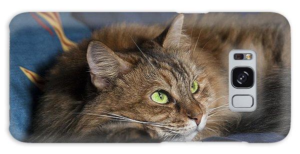 Jade Eyes In The Blue Galaxy Case