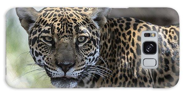 Jaguar Portrait Galaxy Case