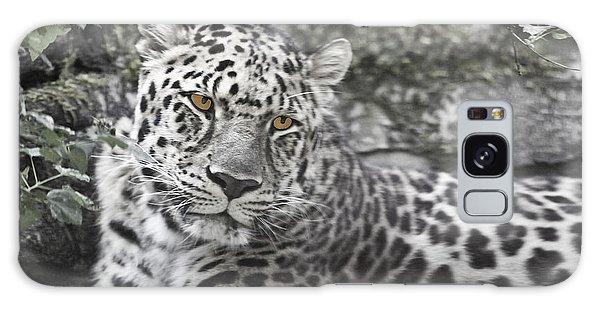 Jaguar Galaxy Case by Rich Collins