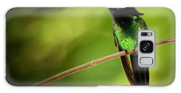 Jamaican Hummingbird 2 Galaxy Case