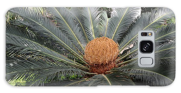 Japanese Cycad Galaxy Case