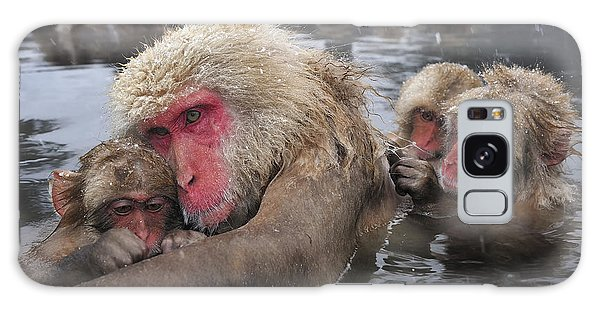 Japanese Macaque Grooming Mother Galaxy Case