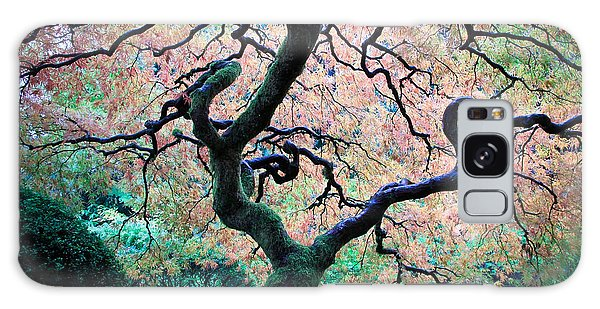 Japanese Maple In Autumn Galaxy Case by Athena Mckinzie
