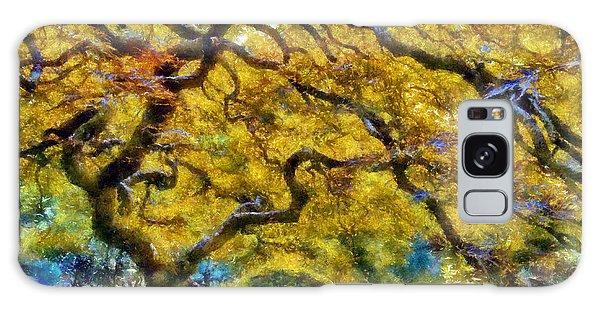 Japanese Maple In Washington Park Galaxy Case by Kaylee Mason