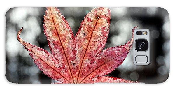Japanese Maple Leaf - 2 Galaxy Case