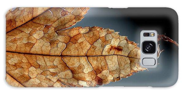 Japanese Maple Leaf Brown - 1 Galaxy Case
