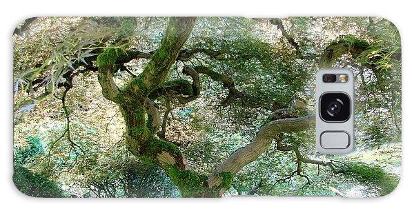 Japanese Maple Tree II Galaxy Case by Athena Mckinzie