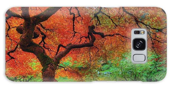 Japanese Maple Tree In Autumn Galaxy Case
