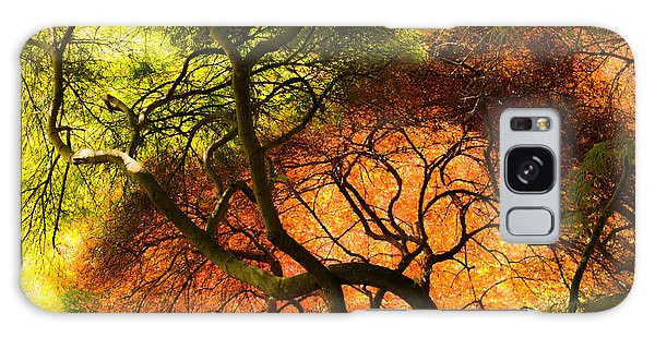 Japanese Maples Galaxy Case by Angela DeFrias
