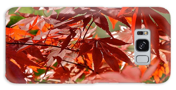 Japanese Red Leaf Maple Galaxy Case by Kirsten Giving