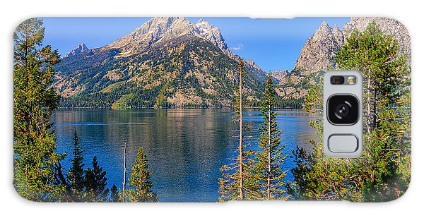 Jenny Lake Overlook Galaxy Case