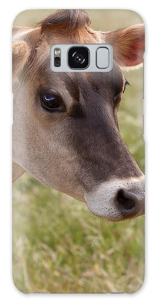 Jersey Cow Portrait Galaxy Case
