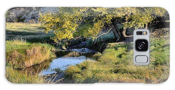 Jordan Creek Autumn Galaxy Case