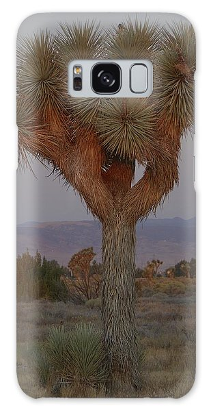 Joshua Tree And Harvest Moon Setting Galaxy Case